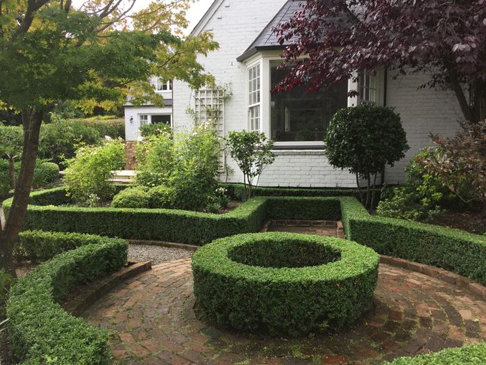 shaped hedge garden courtyard