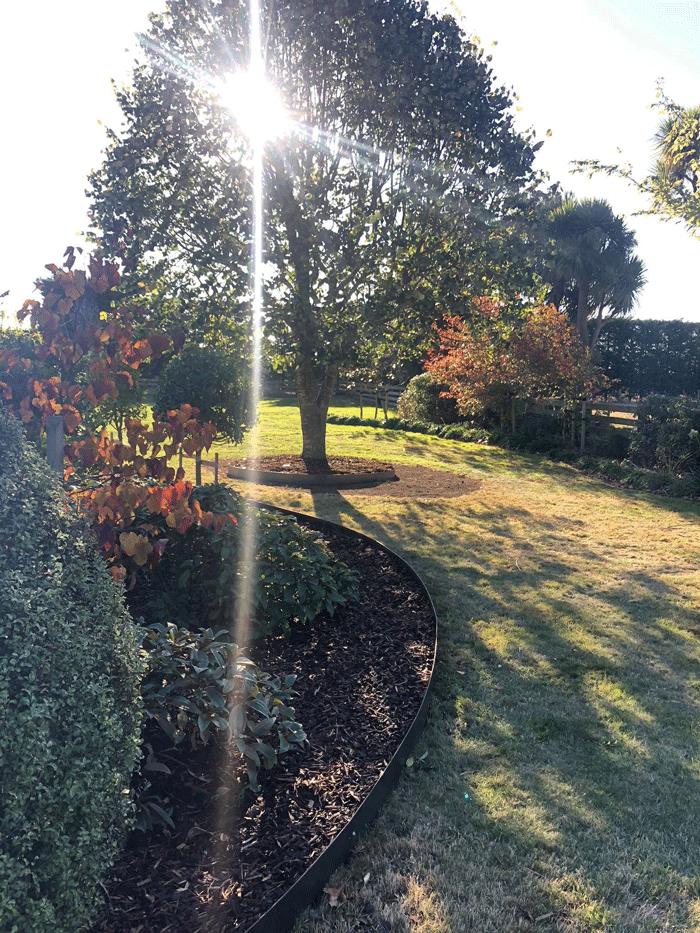 straight curve garden
